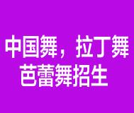 中国舞,拉丁舞    芭蕾舞招生